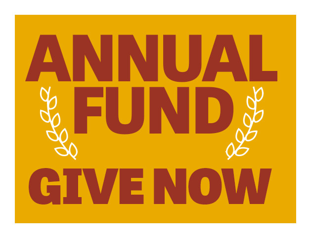 This is a graphic that simply reads, Annual Fund, Give  Now.  This is to help promote donations to the school's annual fund.