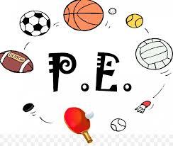 P.E. Equipment