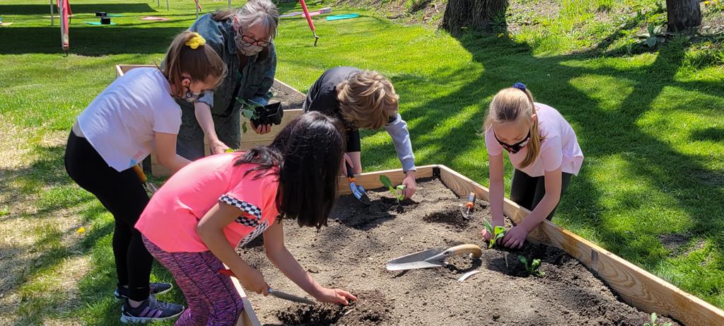 Second graders work in the garden