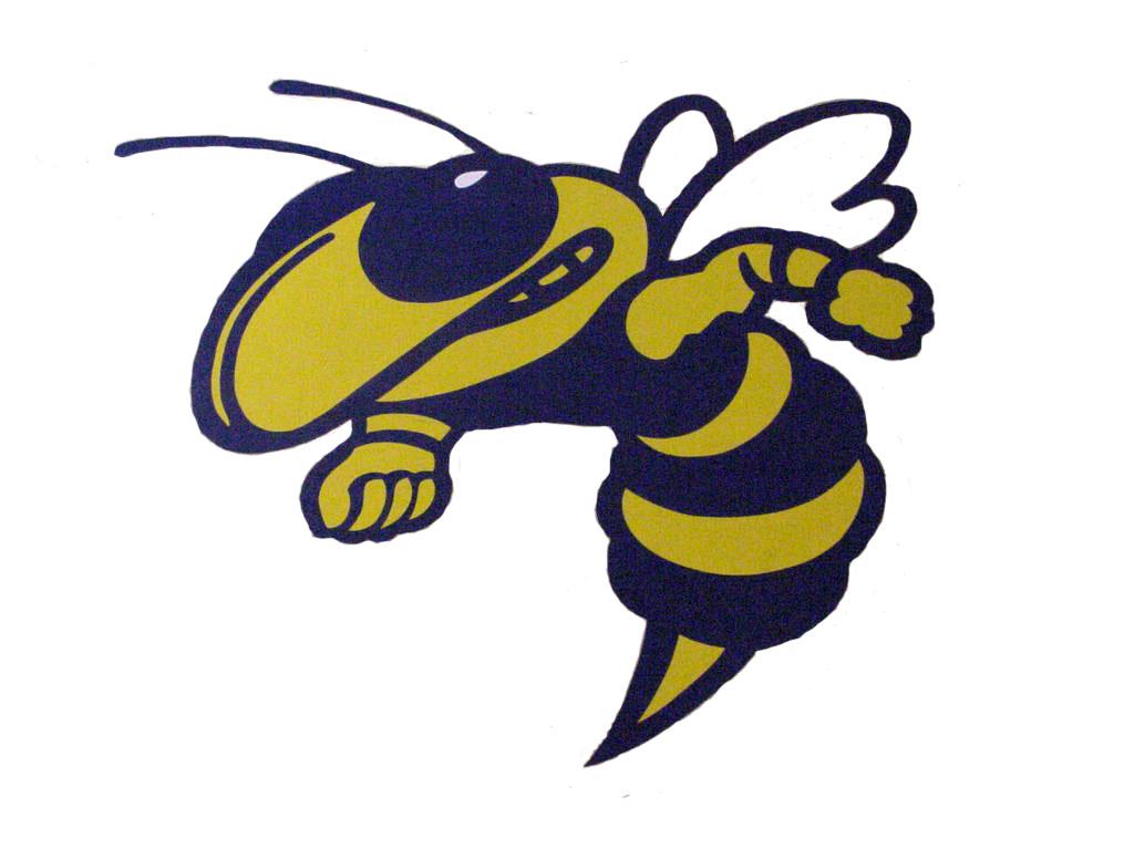 Old Hornet Logo