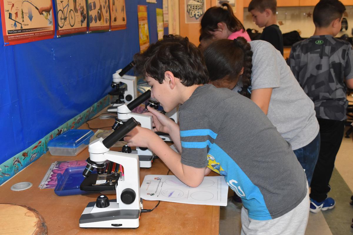 boy looks into microscope