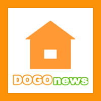 Dogo News Website