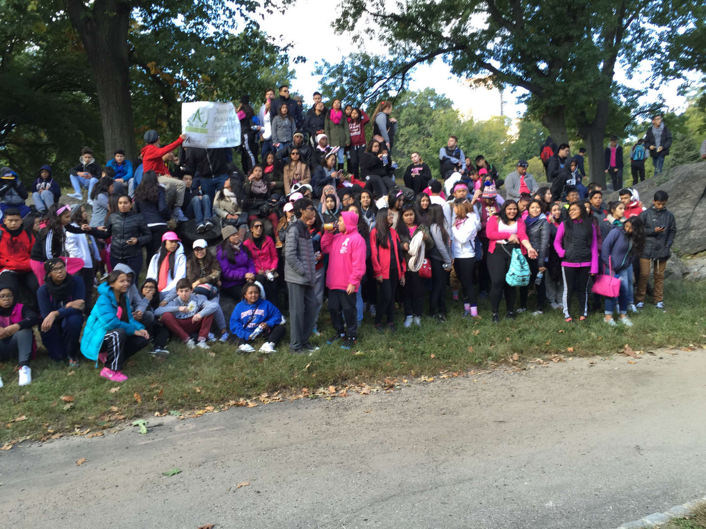 Making Strides Breast Cancer Walk October 2015