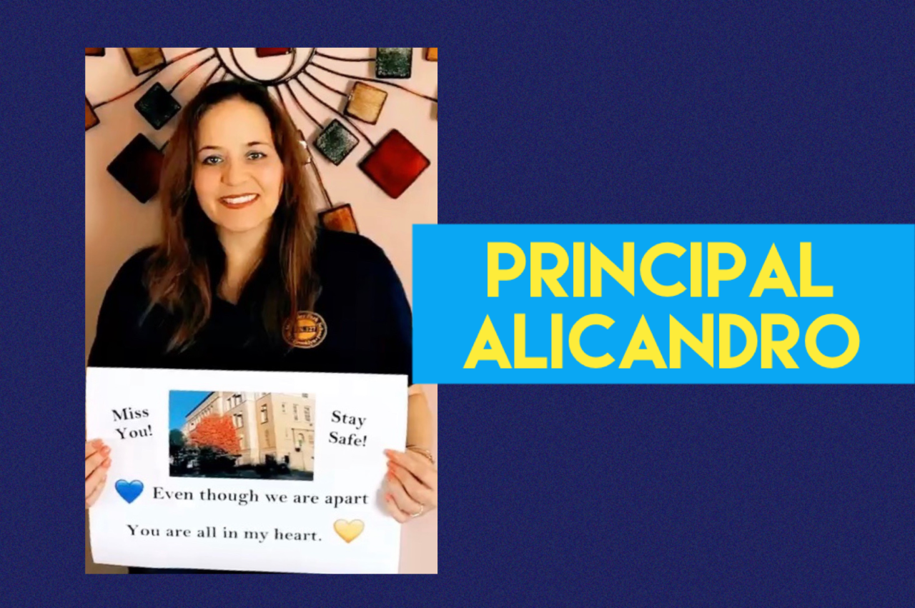 Principal Alicandro