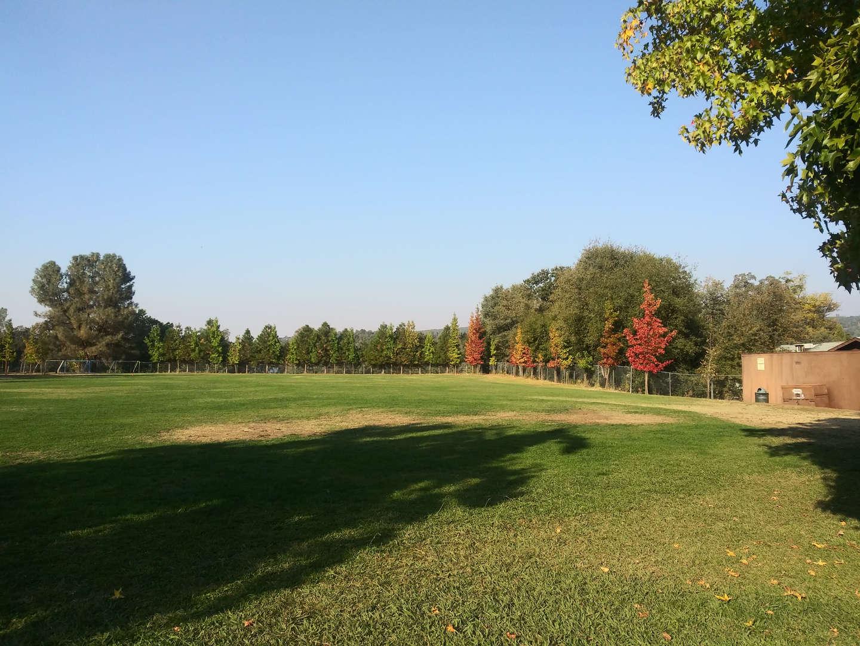 Summerville Elementary School Lawn
