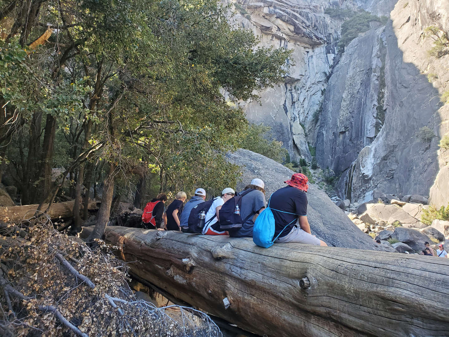 Students sitting on a log surrounded by mountains and nature.