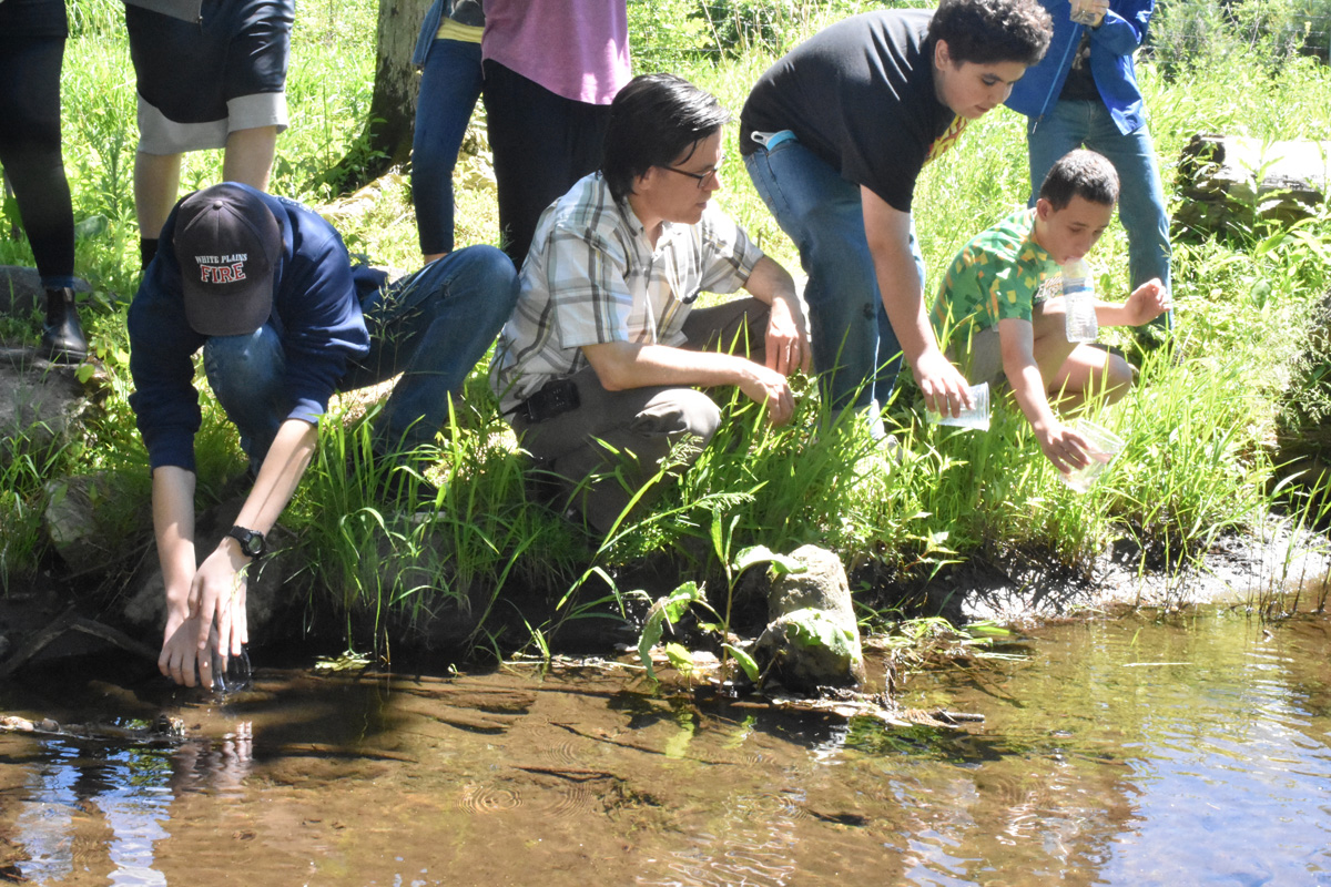 students crouch over stream
