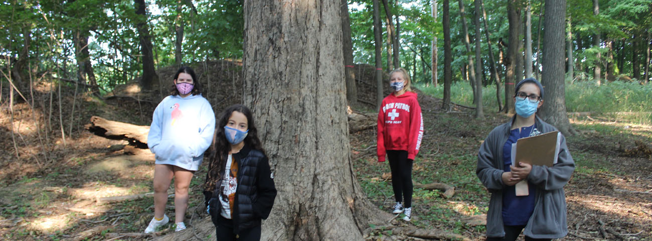 Students explore characteristics of trees to learn how scientists work.