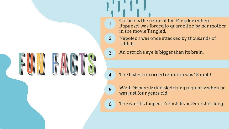 Fun Facts