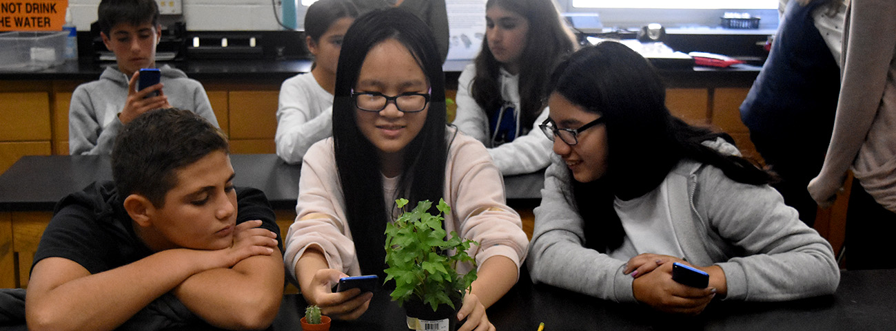 3 students look at plant on table