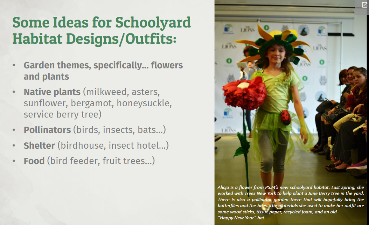 Some ideas for schoolyard habitat design outfits