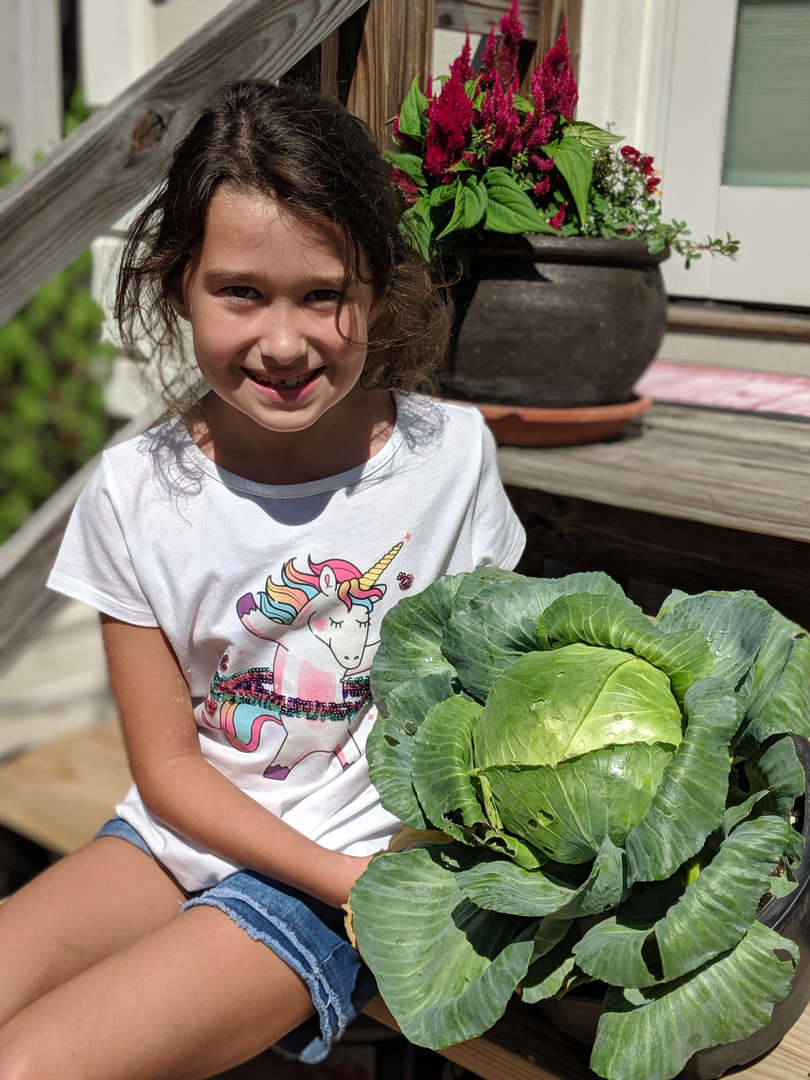 Katelyn and her cabbage