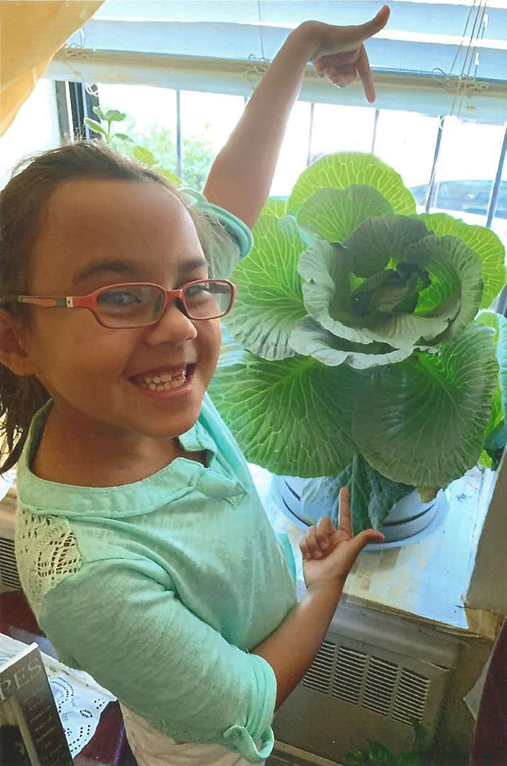 Michelle and her cabbage plant