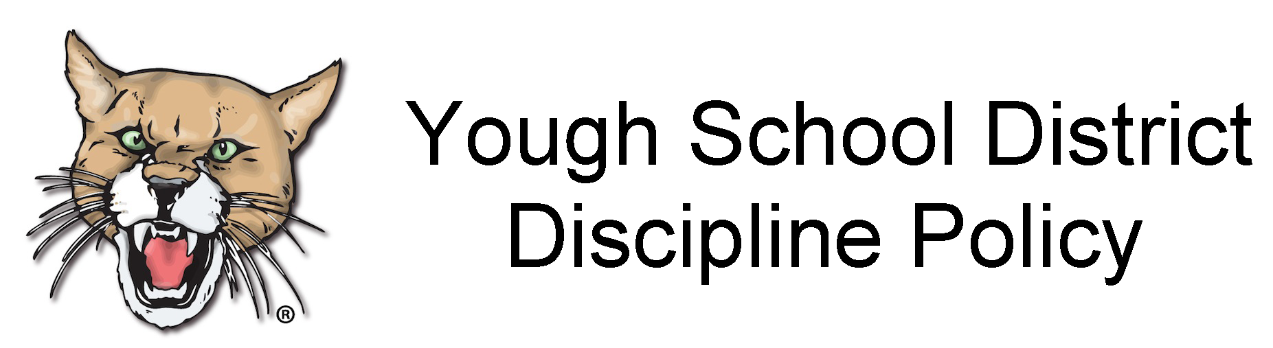 Link to Discipline Policy