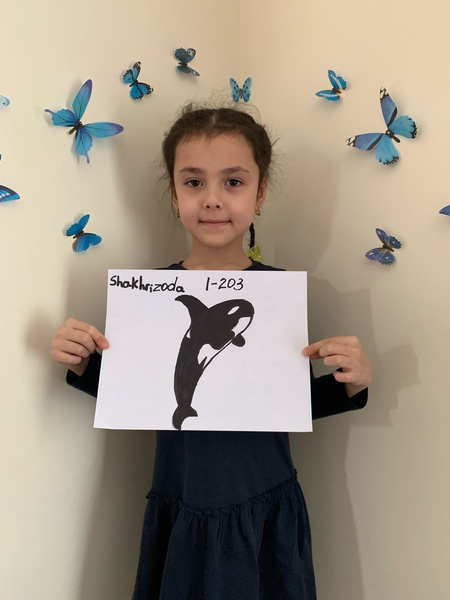 child shows her killer whale