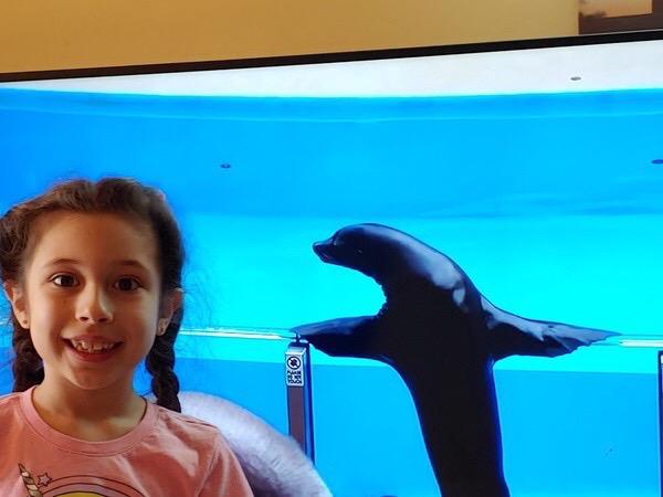child smiles near the sea lion