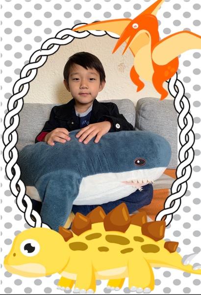 the boy holds a large stuffed shark