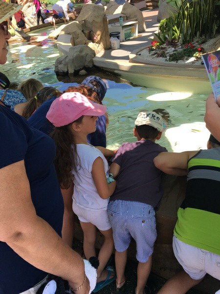 children look into the tank