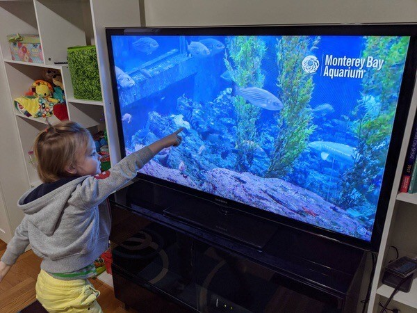 Girl posting to television aquarium