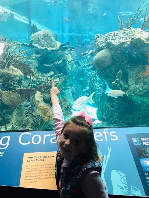 girl pointing to the fish