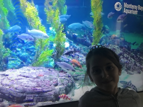 Posing with a virtual picture of the Monterey Bay Aquarium