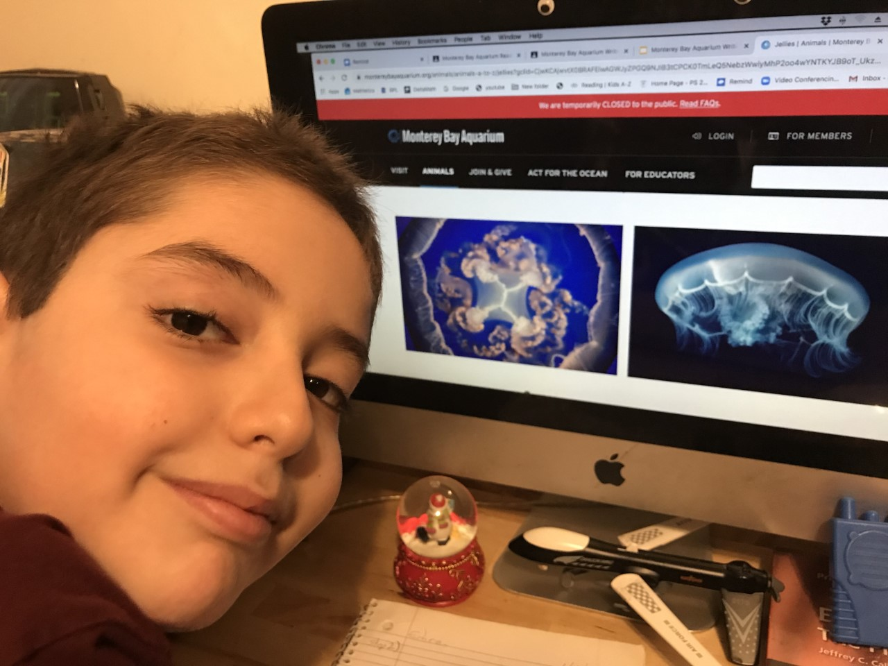 Student enjoying a virtual trip to the Monterey Bay Aquarium