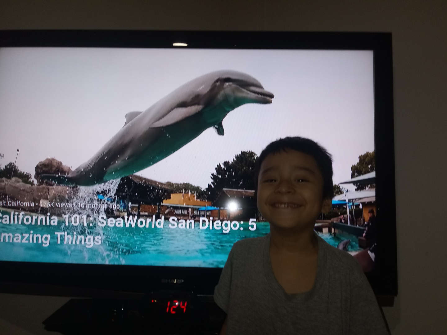 child standing in front of dolphin on screen