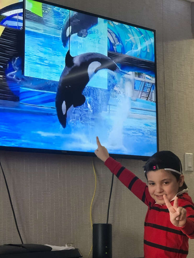 boy points to the jumping whale