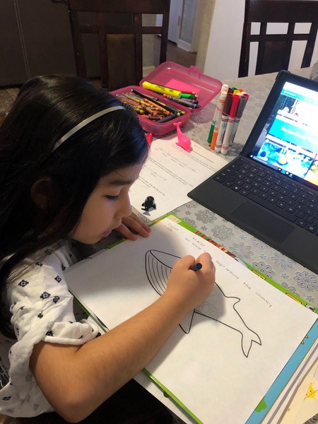girl colors whale near laptop