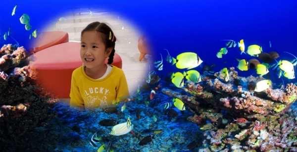 the child is placed in the aquarium