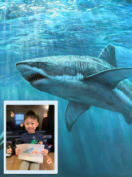 Virtually swimming with the sharks