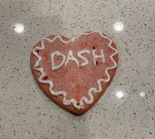 Dash's cookie