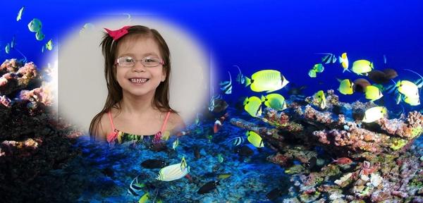 a child smiles with the aquarium