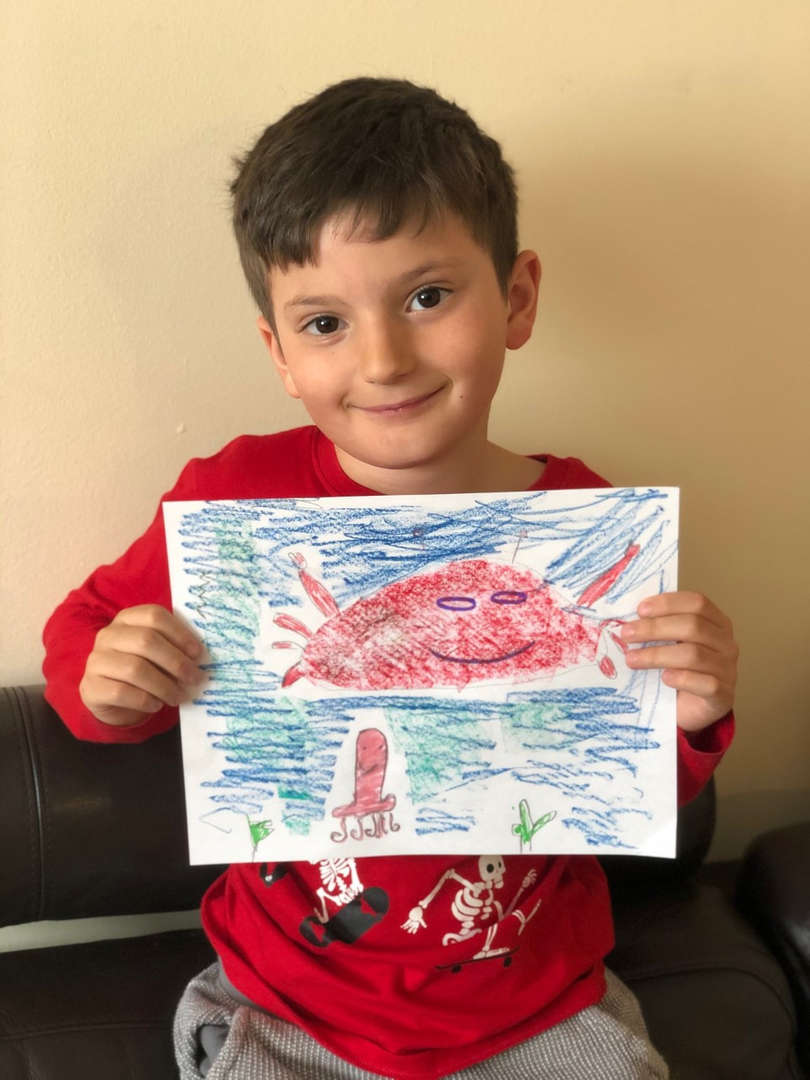 child holds his sea world drawing
