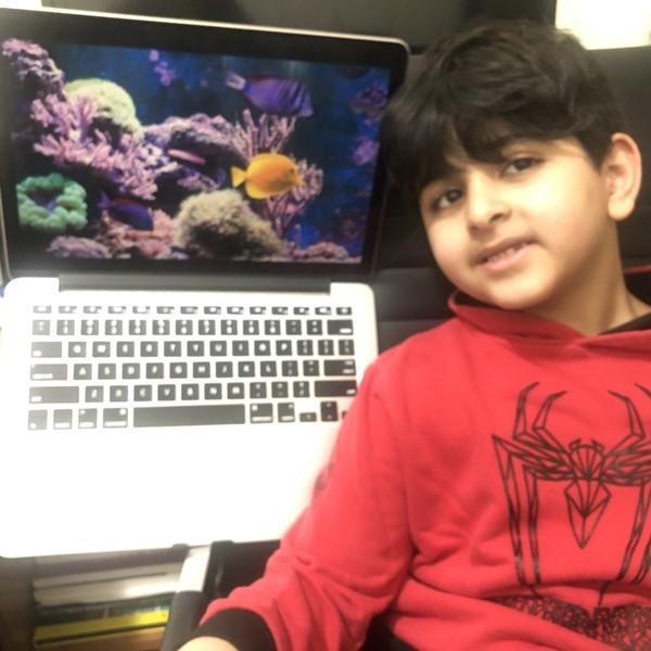 boy stands near laptop