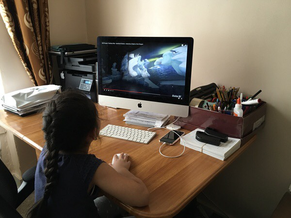 child watches the computer screen at the desk