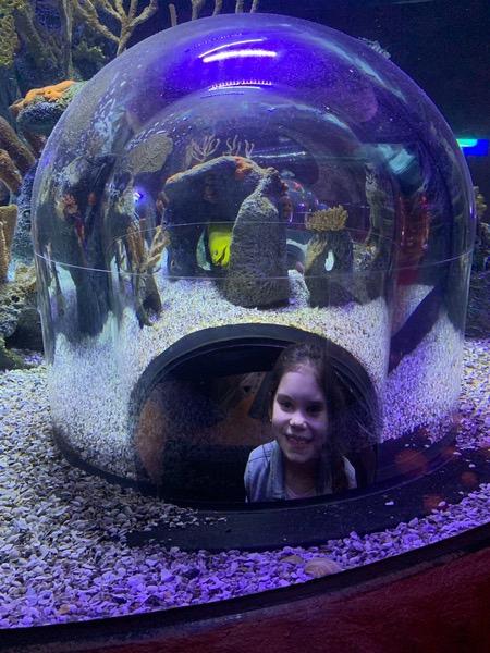 child smiling at sea world