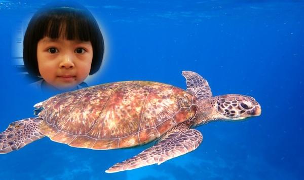 girl photoshopped near turtle