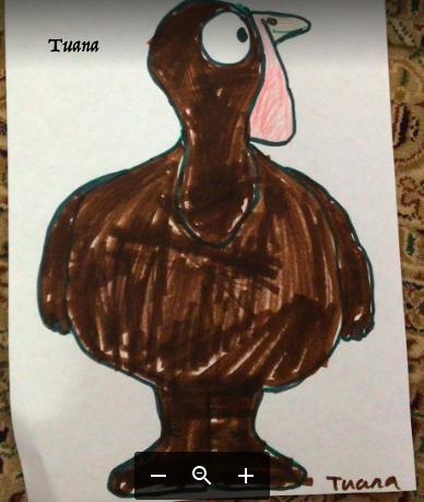 Dark brown turkey