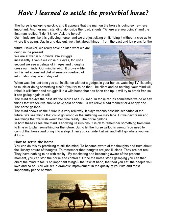 wild horse running on beach