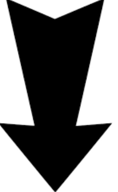 directional arrow icon