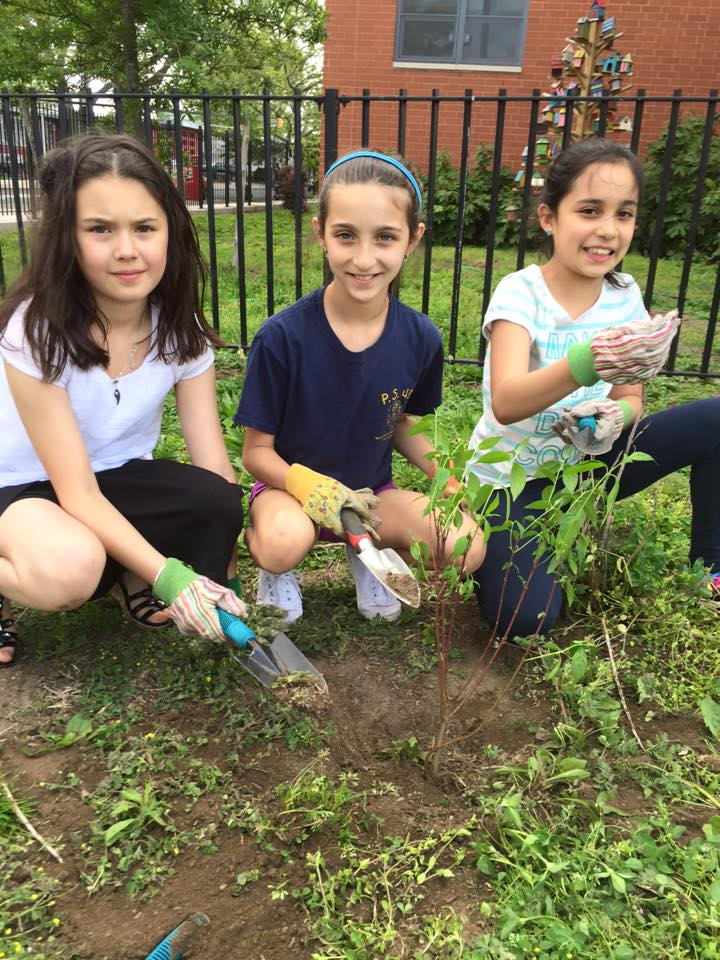 Students planting in PS/IS 48's community garden as part of the Green Apple Corps residency program