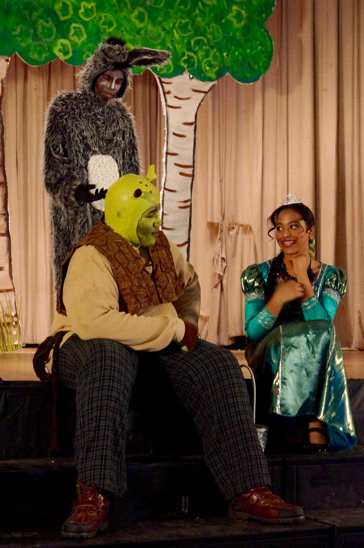 Shrek singing with Princess Fiona