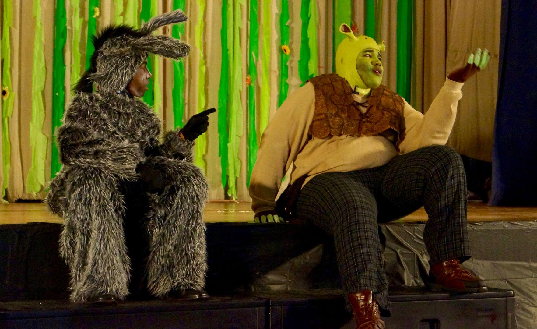 Shrek dancing with Donkey