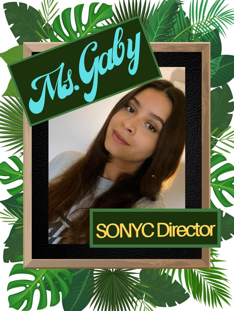 sonyc's director