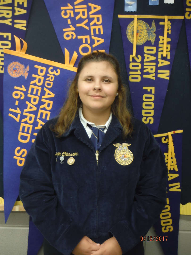 Vice President- Megan Chiasson