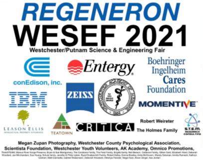 WESEF 2021