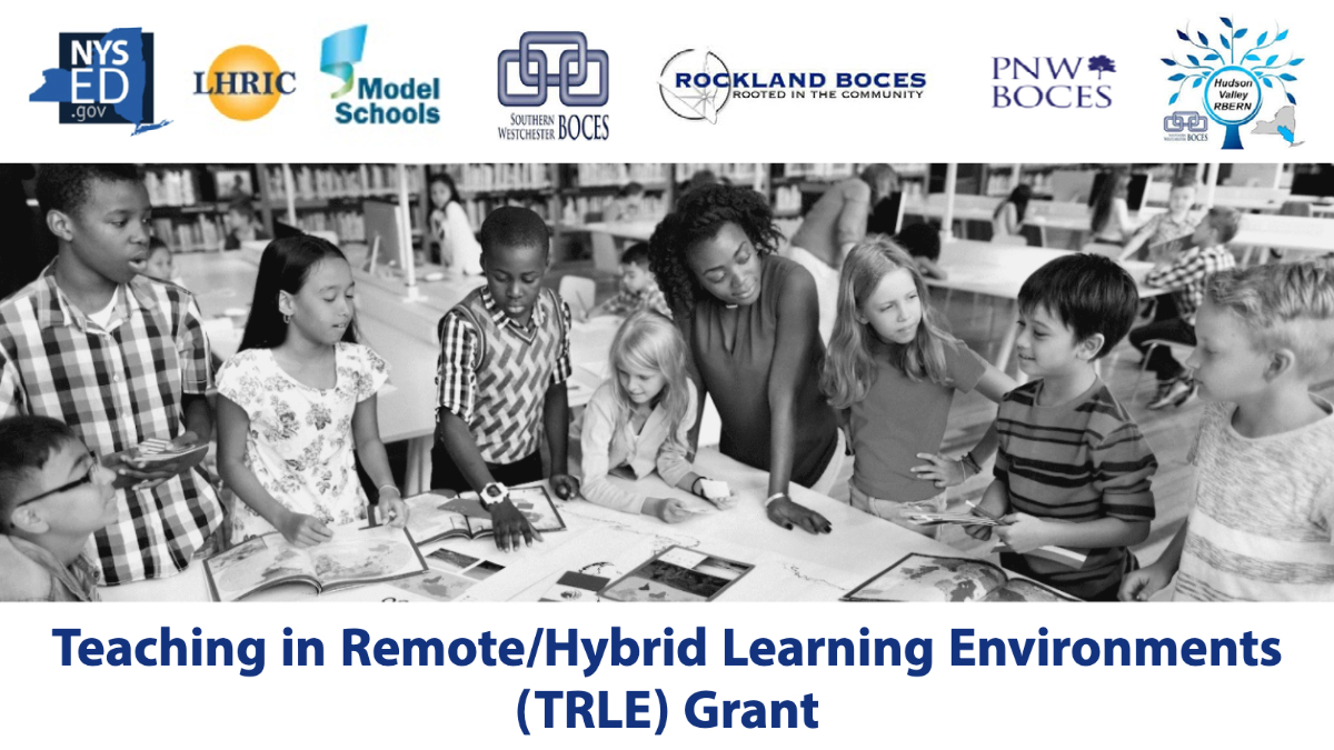 Teaching in Remote/Hybrid Learning Environments (TRLE) Grant