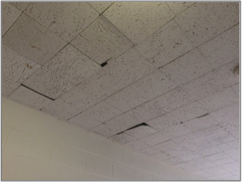 Replace concealed spline ceilings which is difficult to repair as is