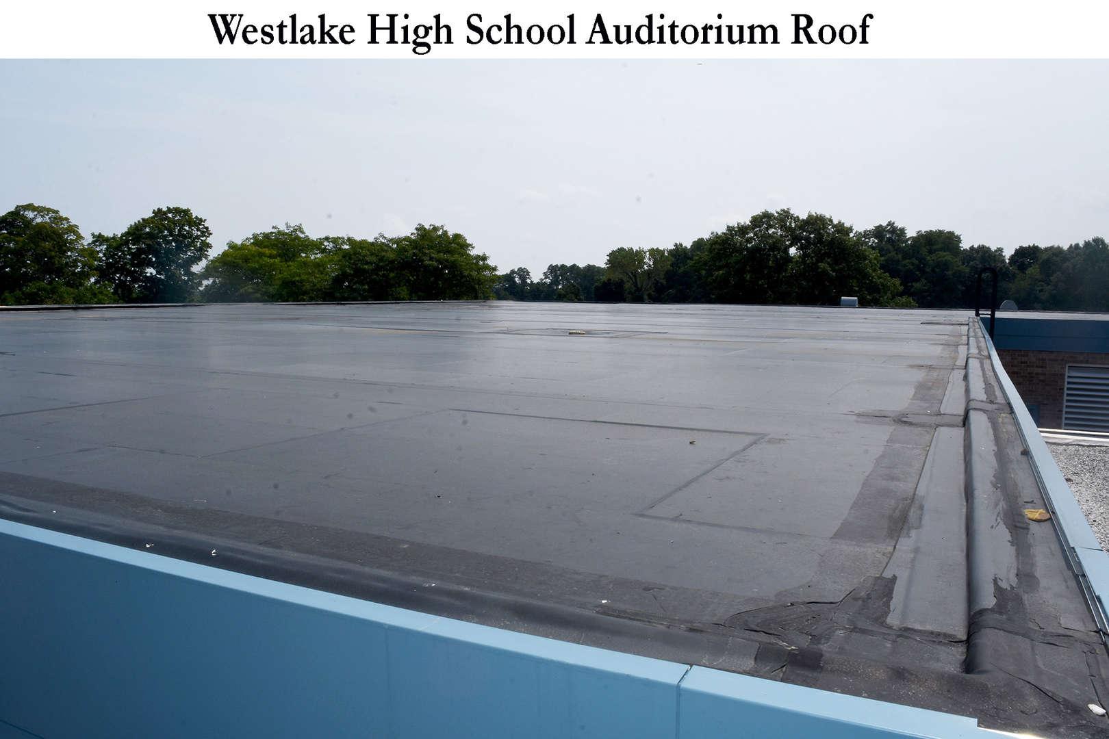 WHS Auditorium roof